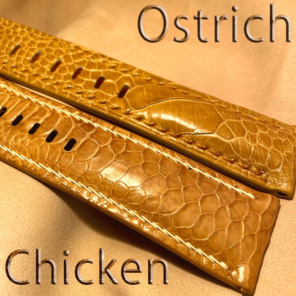 オーストリッチとチキンのベルトを見比べてみました。page-visual オーストリッチとチキンのベルトを見比べてみました。ビジュアル