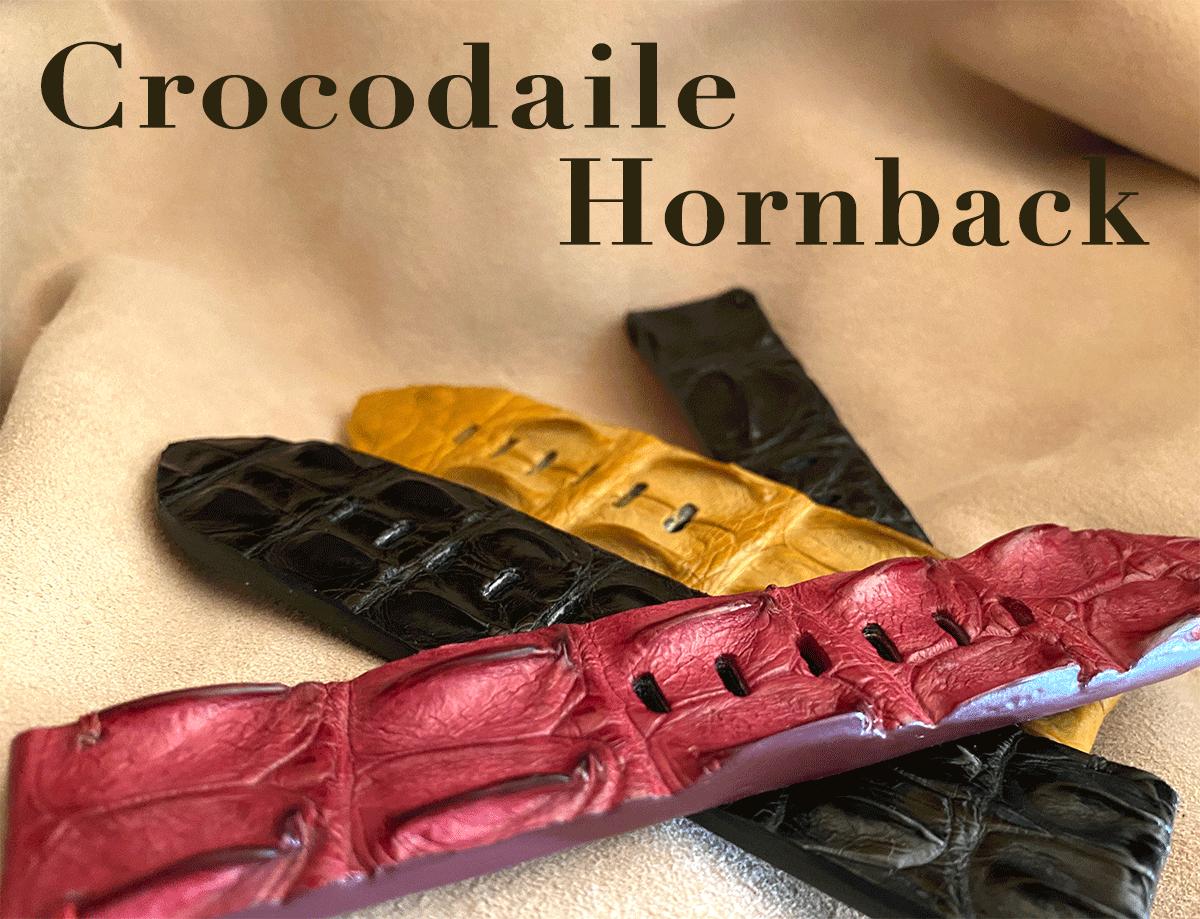 クロコダイルのホーンバックpage-visual クロコダイルのホーンバックビジュアル